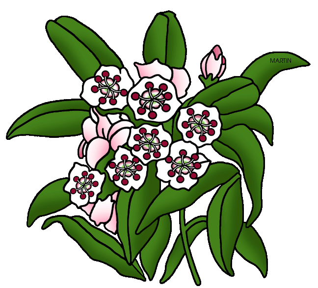 freeuse Laurel clipart clip art. United states by phillip.