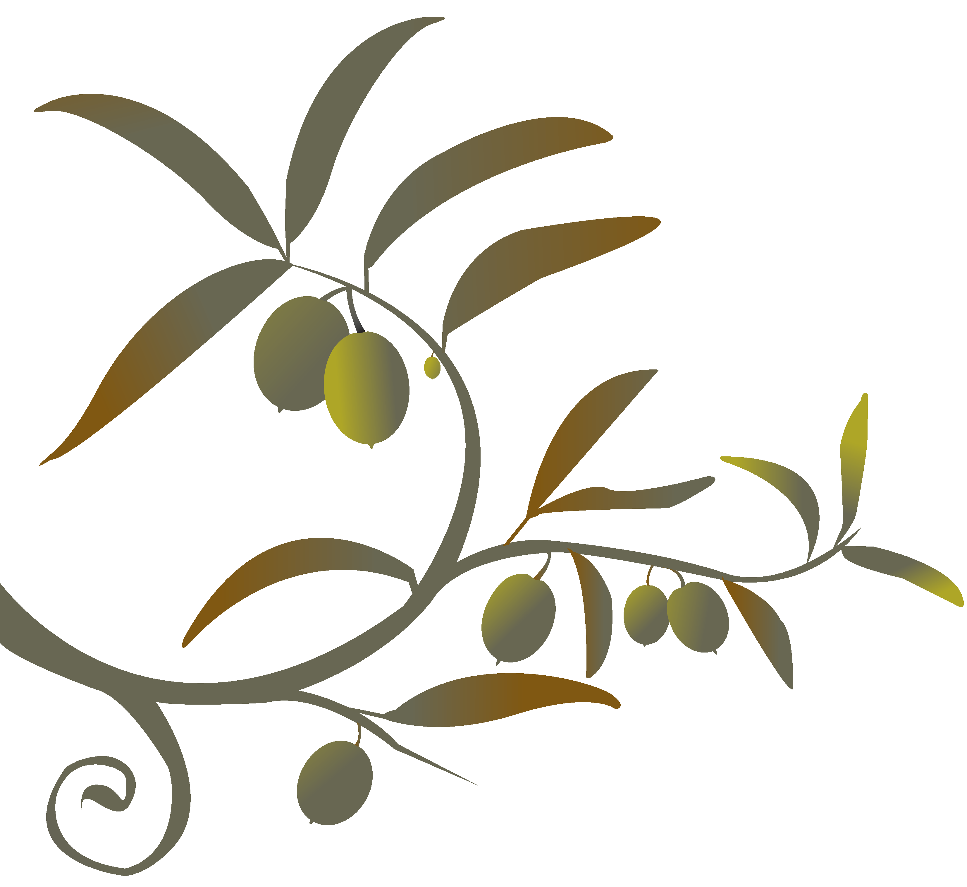 clip freeuse stock Png siren song of. Olive branch wreath clipart