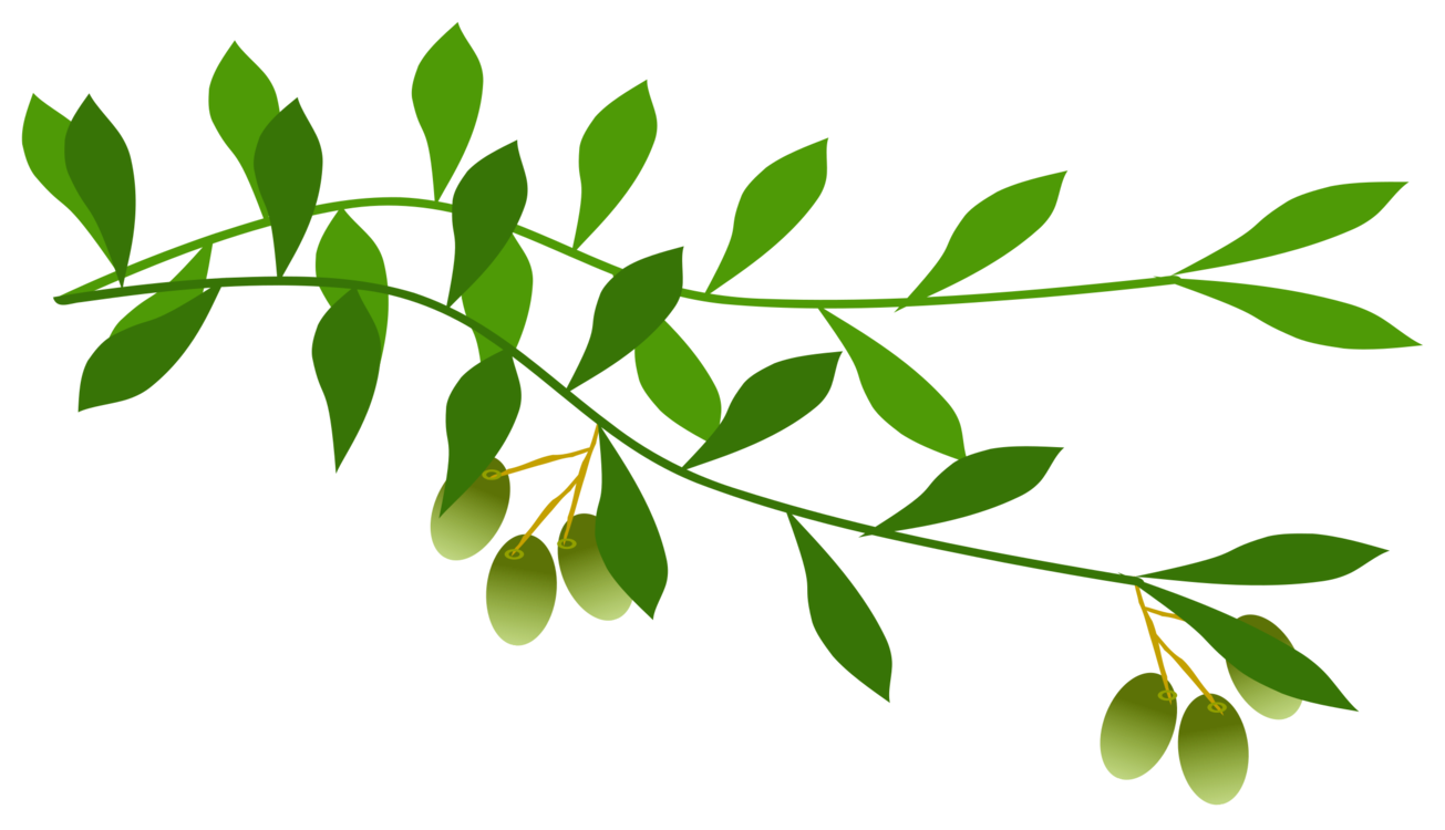 graphic freeuse library Leaf wreath tree free. Laurel clipart olive branch.