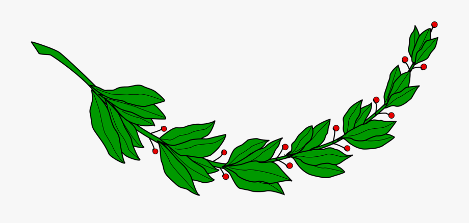 image library Laurel Clipart Olive Branch
