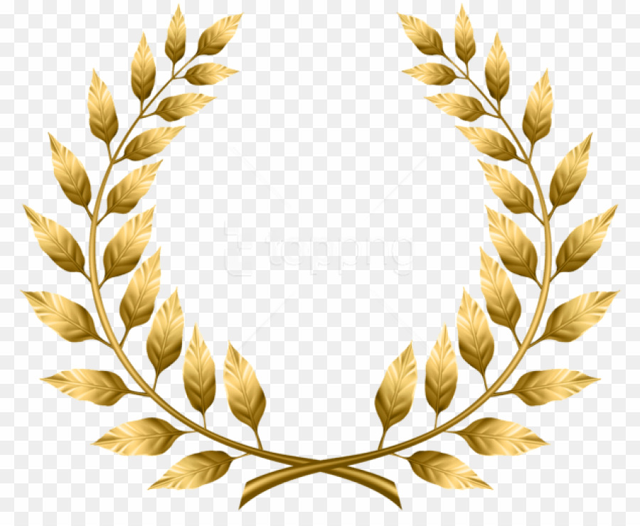 clip art freeuse Png bay wreath clipart. Laureles vector laurel leaves