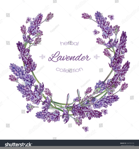 clip art free Lavender border clipart. Free images at clker