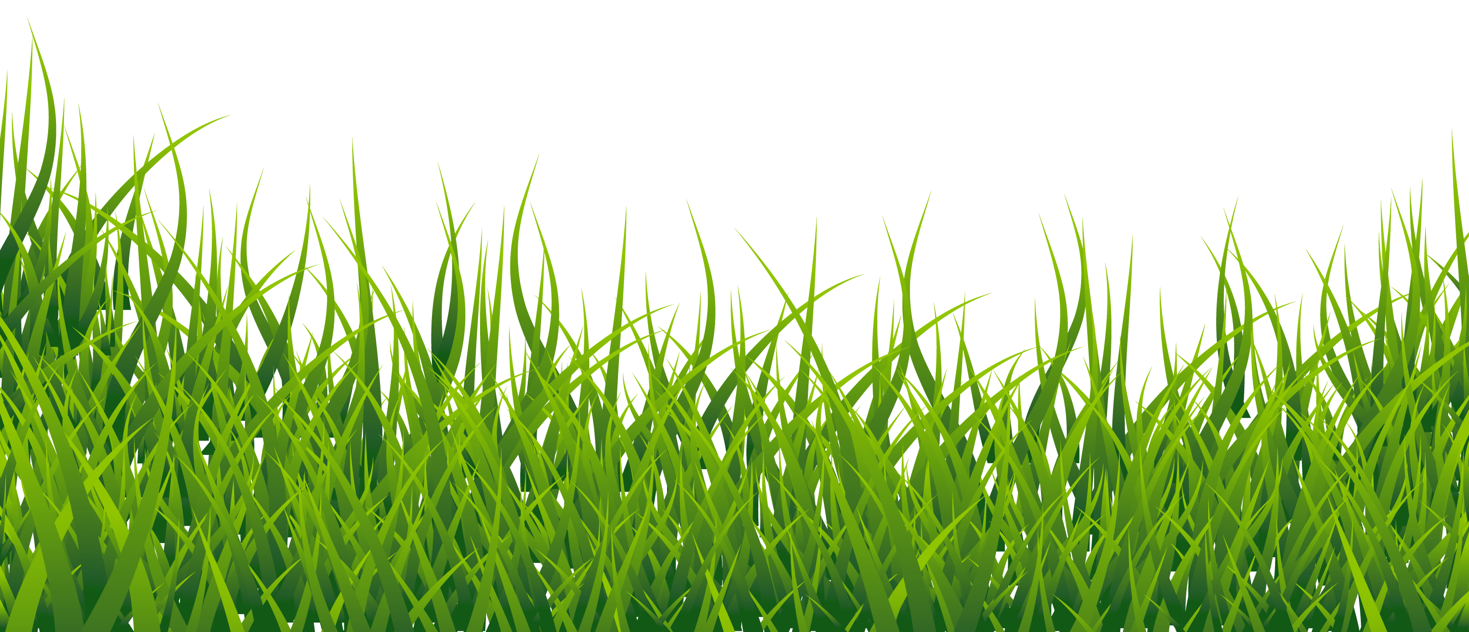 transparent Pin by kushal agarwal. Lawn care clipart high grass.