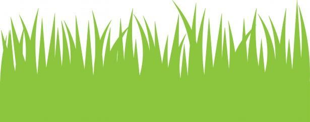 image stock Lawn care clipart long grass. Tall norwottuck kid