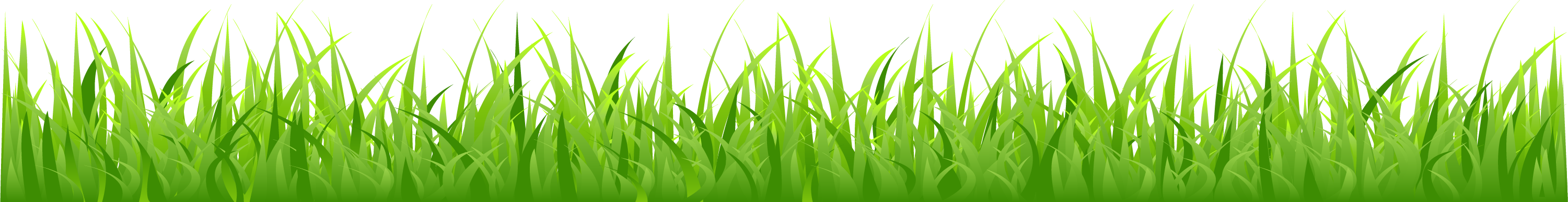 picture library stock Drawing at getdrawings com. Lawn clipart tall grass.