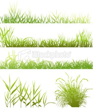 clip royalty free library Collection of meadows traced. Lawn care clipart realistic grass.