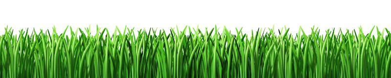 vector transparent download Free cliparts download clip. Lawn clipart.