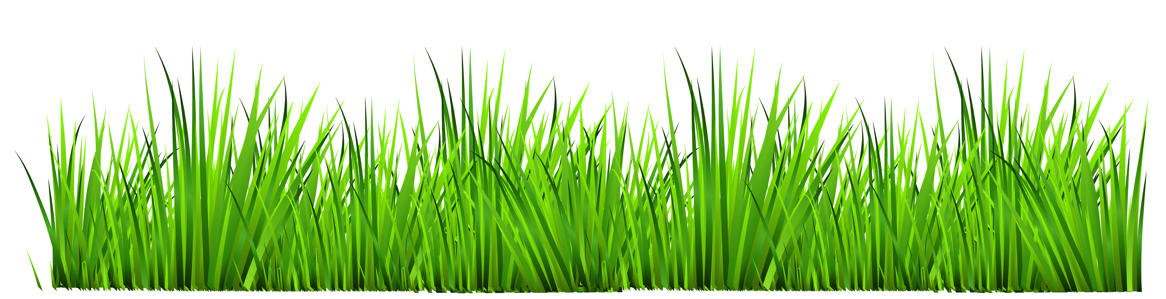 clipart freeuse library  collection of lawn. Grass clipart fodder