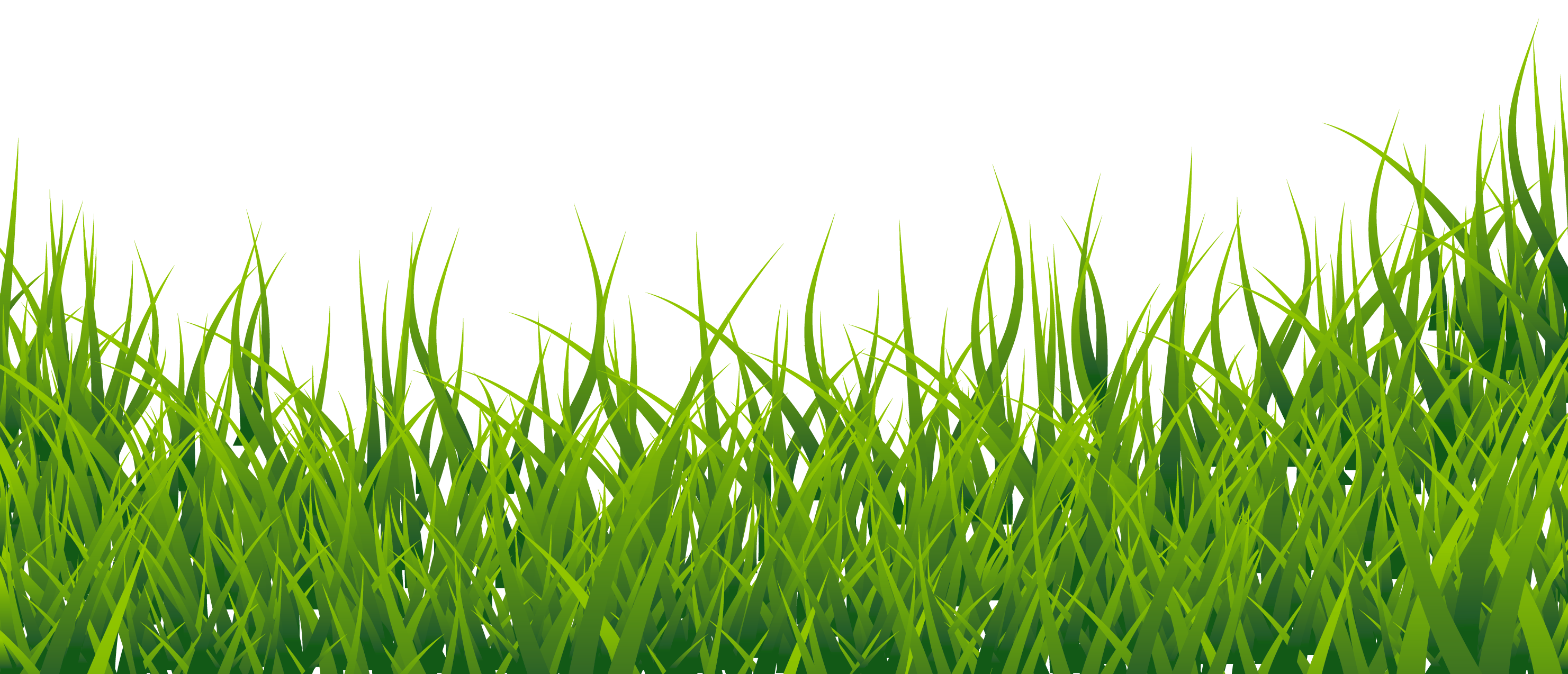 jpg free stock Picture gallery yopriceville high. Free grass clipart border