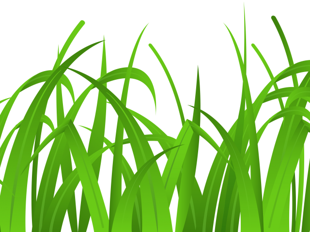 graphic transparent library Grass edge free on. Lawn clipart quehaceres.