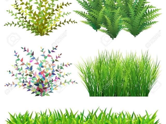 picture transparent library Lawn clipart wild grass. X free clip art.