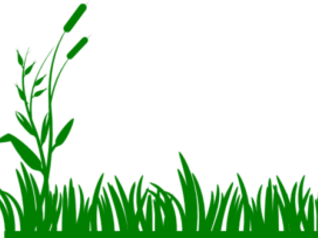 clip black and white library Sea patch of clip. Lawn clipart wild grass.