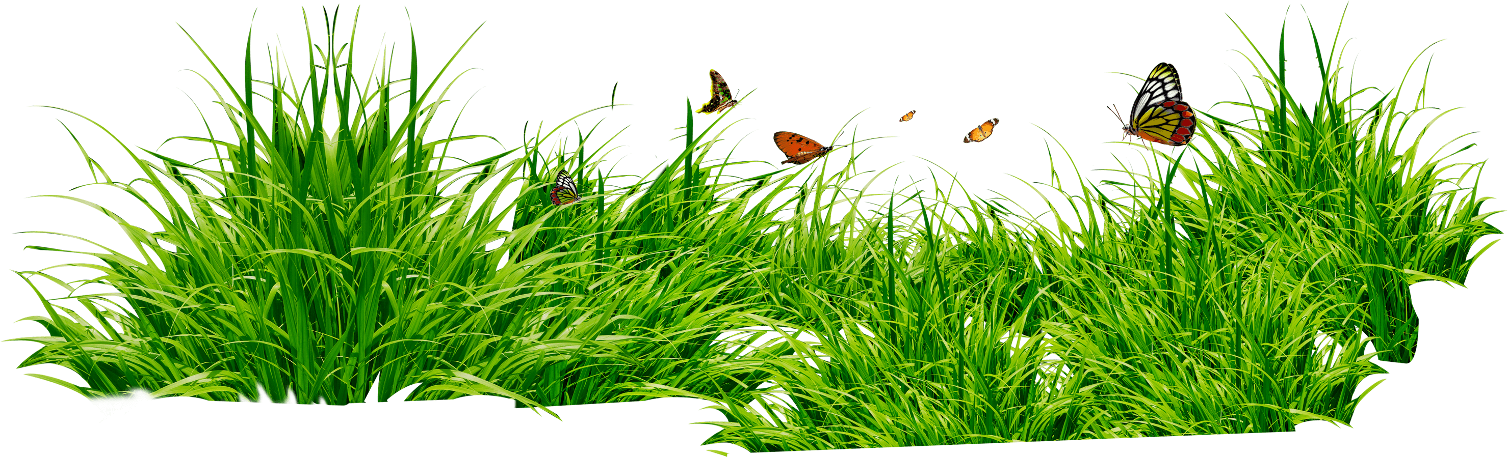svg free library Patch free on dumielauxepices. Lawn clipart wild grass.