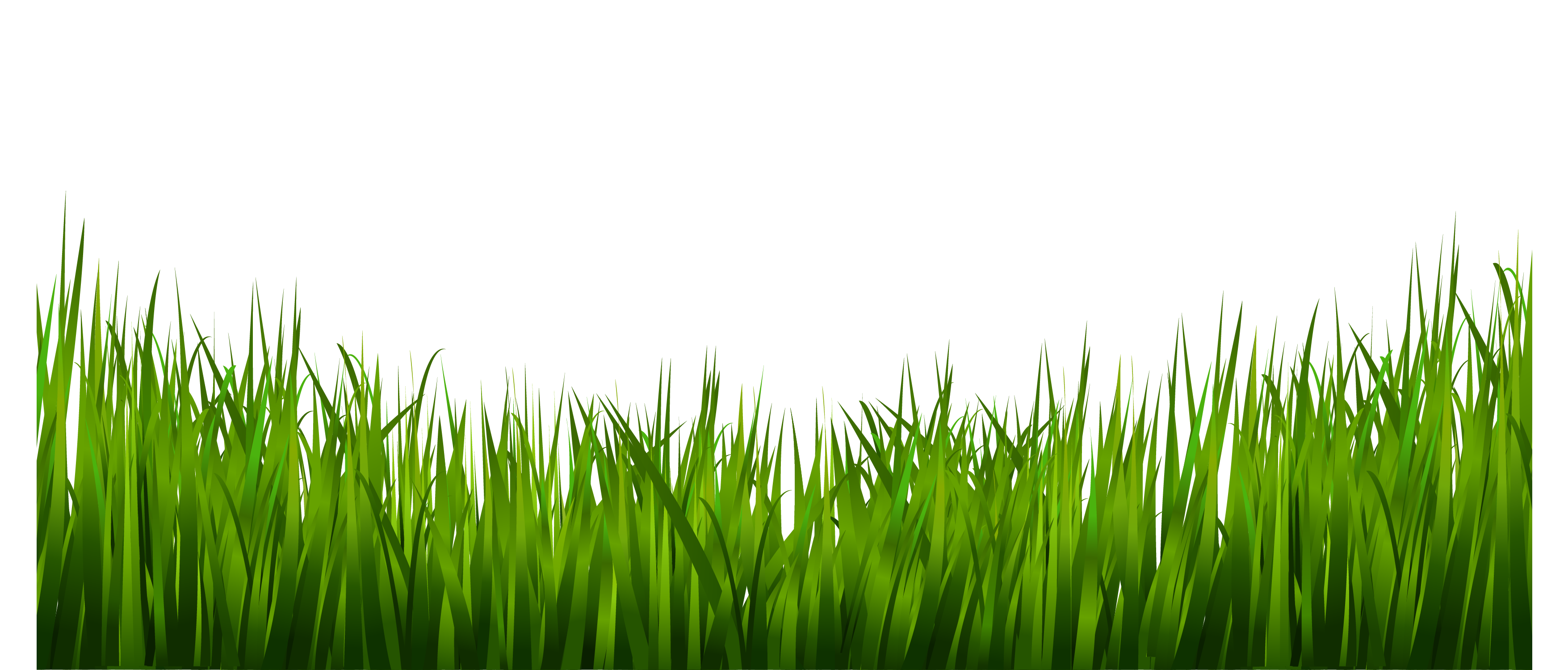clip art library stock Png images a live. Lawn clipart wild grass.