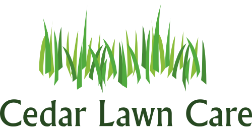 picture royalty free stock Lawn care clipart long grass. Clip art collection