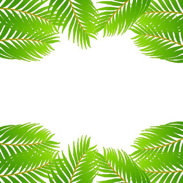 banner Leaf border clipart. Green tropical vector png