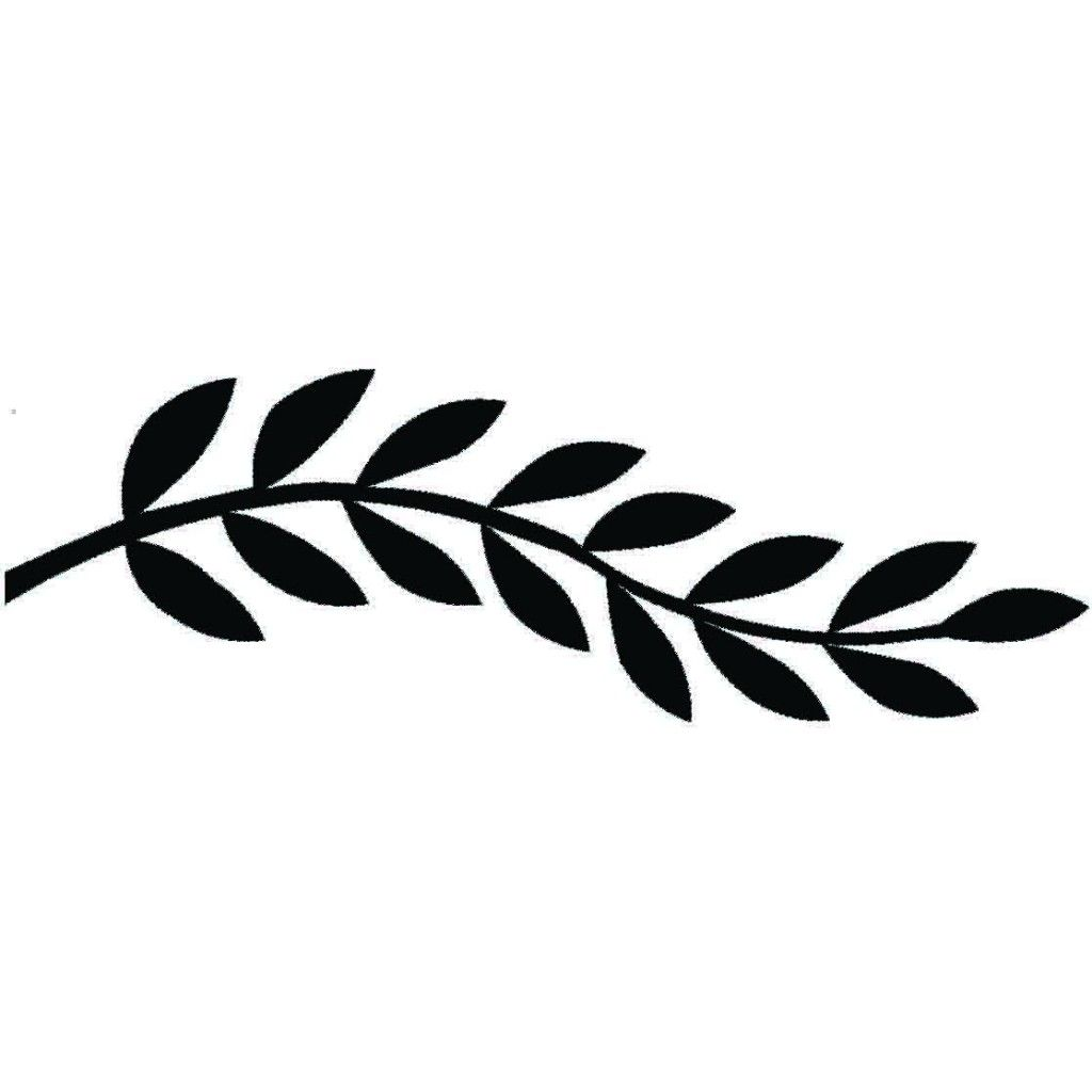 picture freeuse download Google search . Leaf border clipart black and white