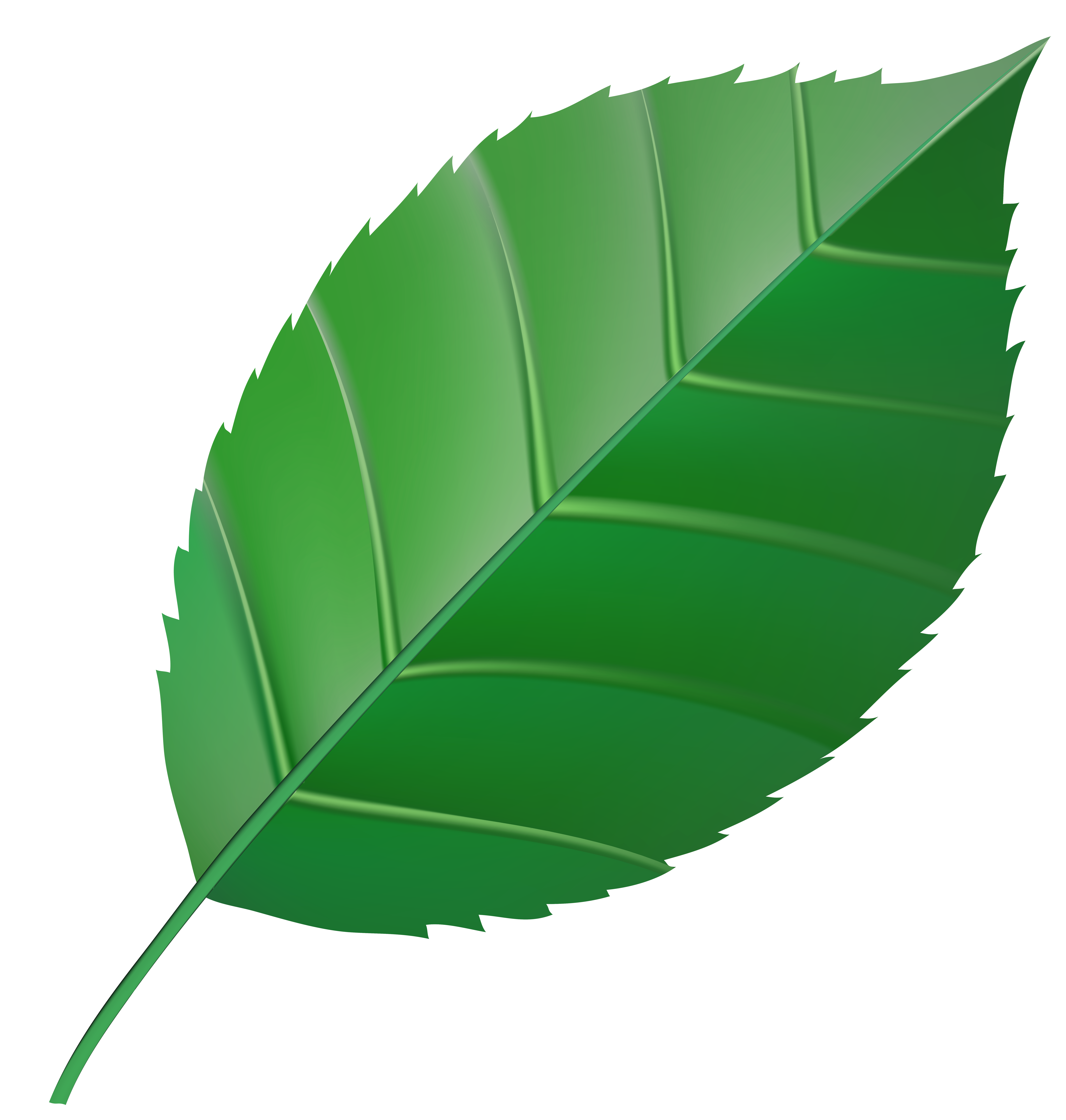 image free library Green transparent clip art. Leaf clipart.