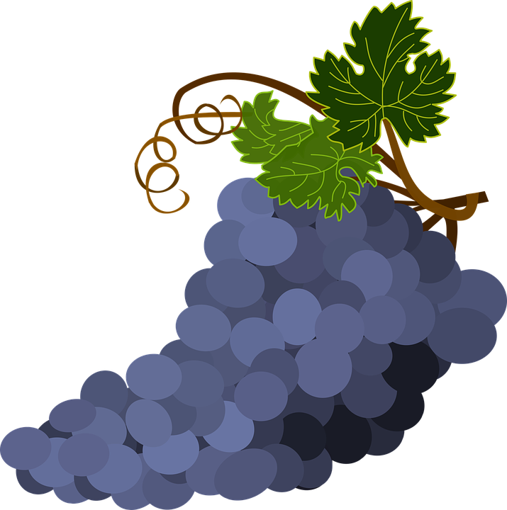 vector royalty free stock Leaf clipart bunch. Of grapes png winogrona.