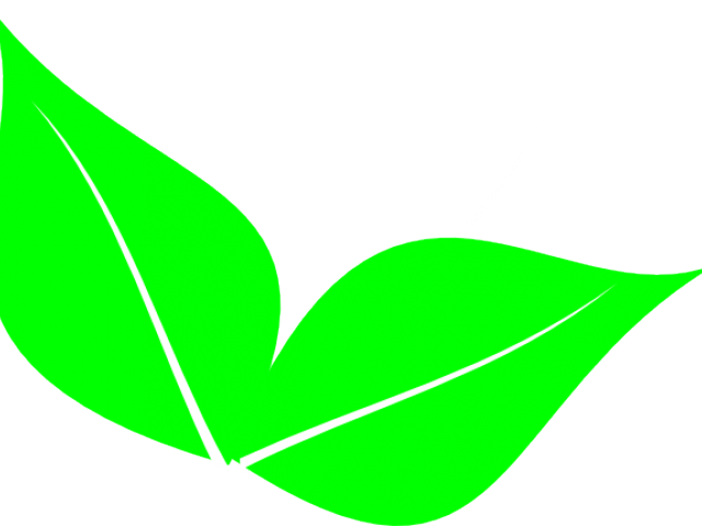 clip art transparent library Leaf clipart greenery. Foliage free on dumielauxepices.