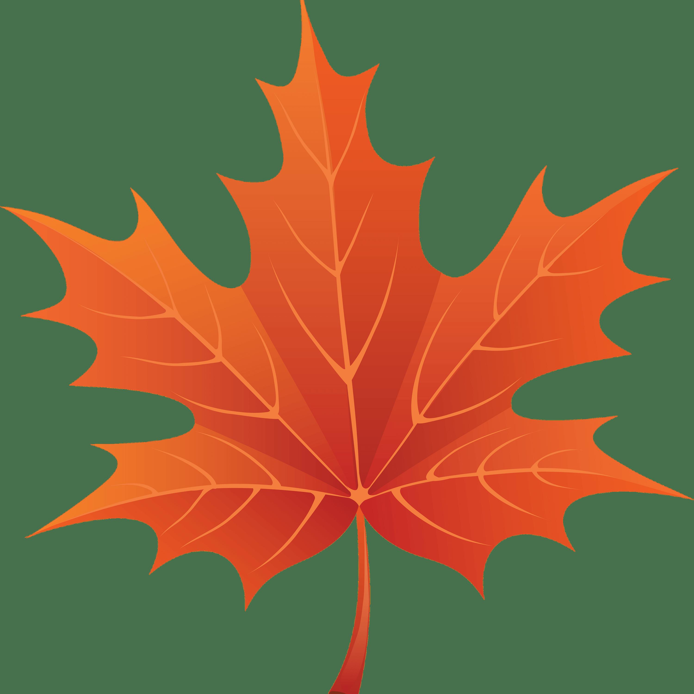 jpg freeuse stock Brown Maple Leaf transparent PNG