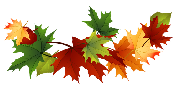clipart transparent download Fall transparent gallery yopriceville. Leaves clipart