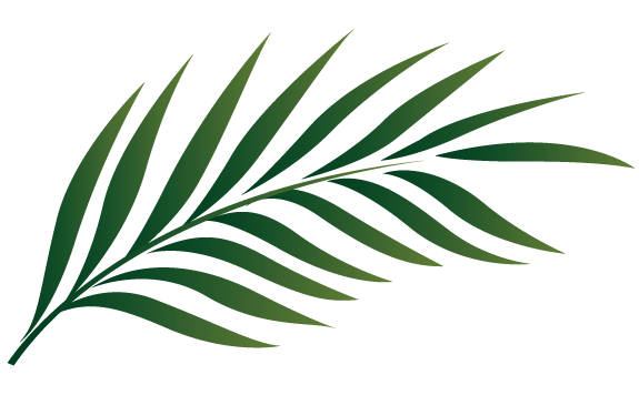graphic black and white library Leaves Clipart