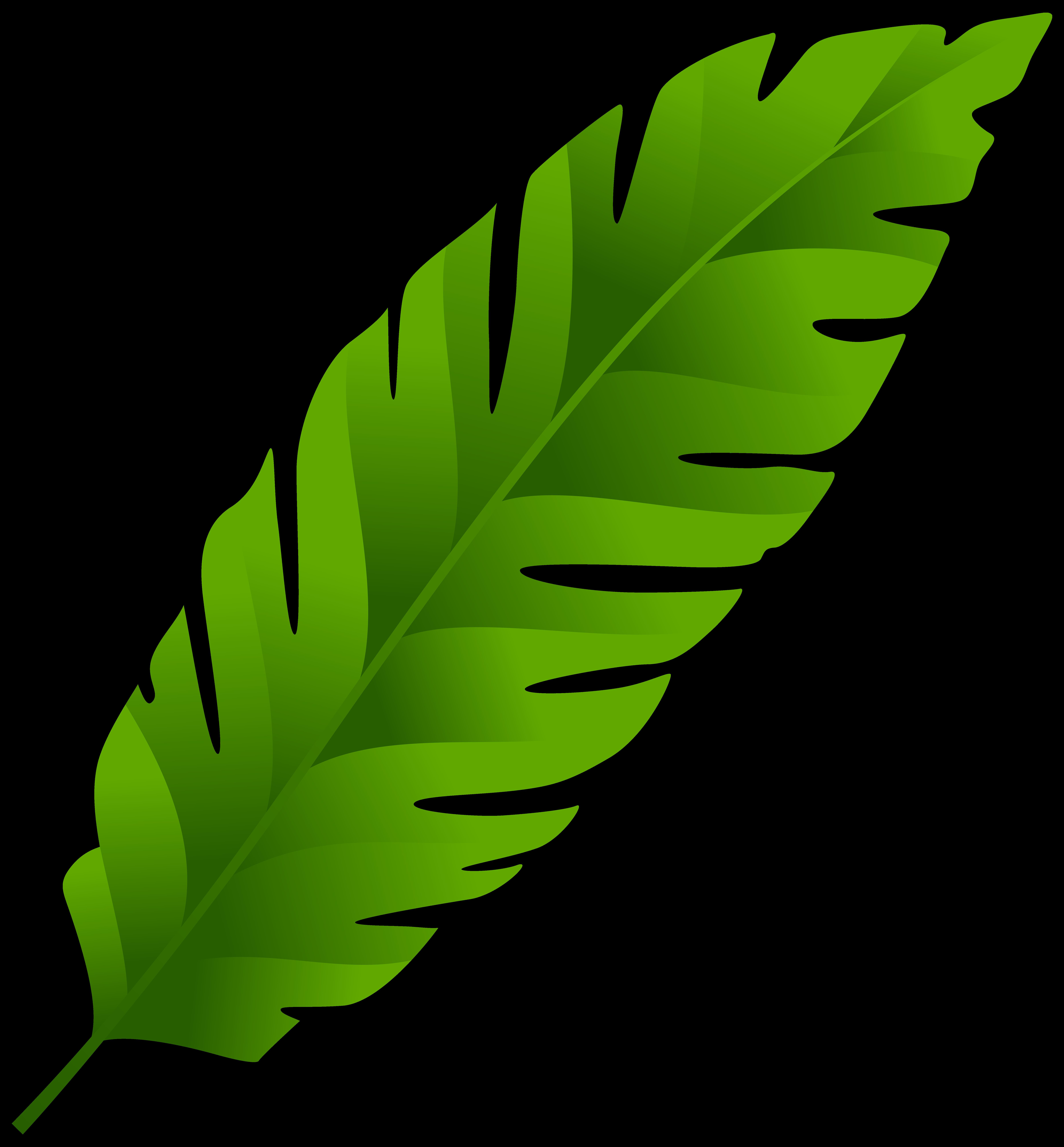 svg royalty free download Banana leaf Palm