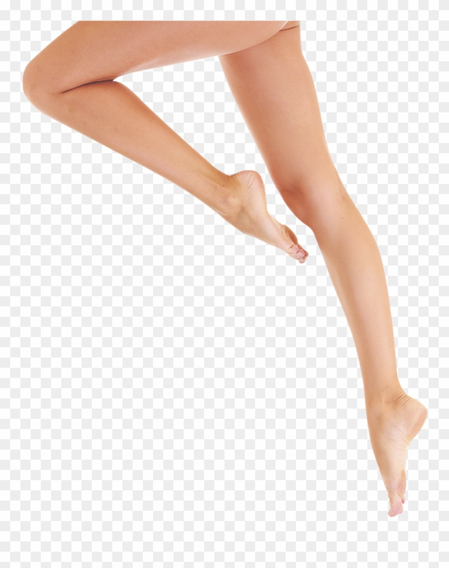 picture library library Legs transparent. Clipart background png