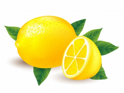 clip art freeuse library Free cliparts download clip. Lemon clipart.