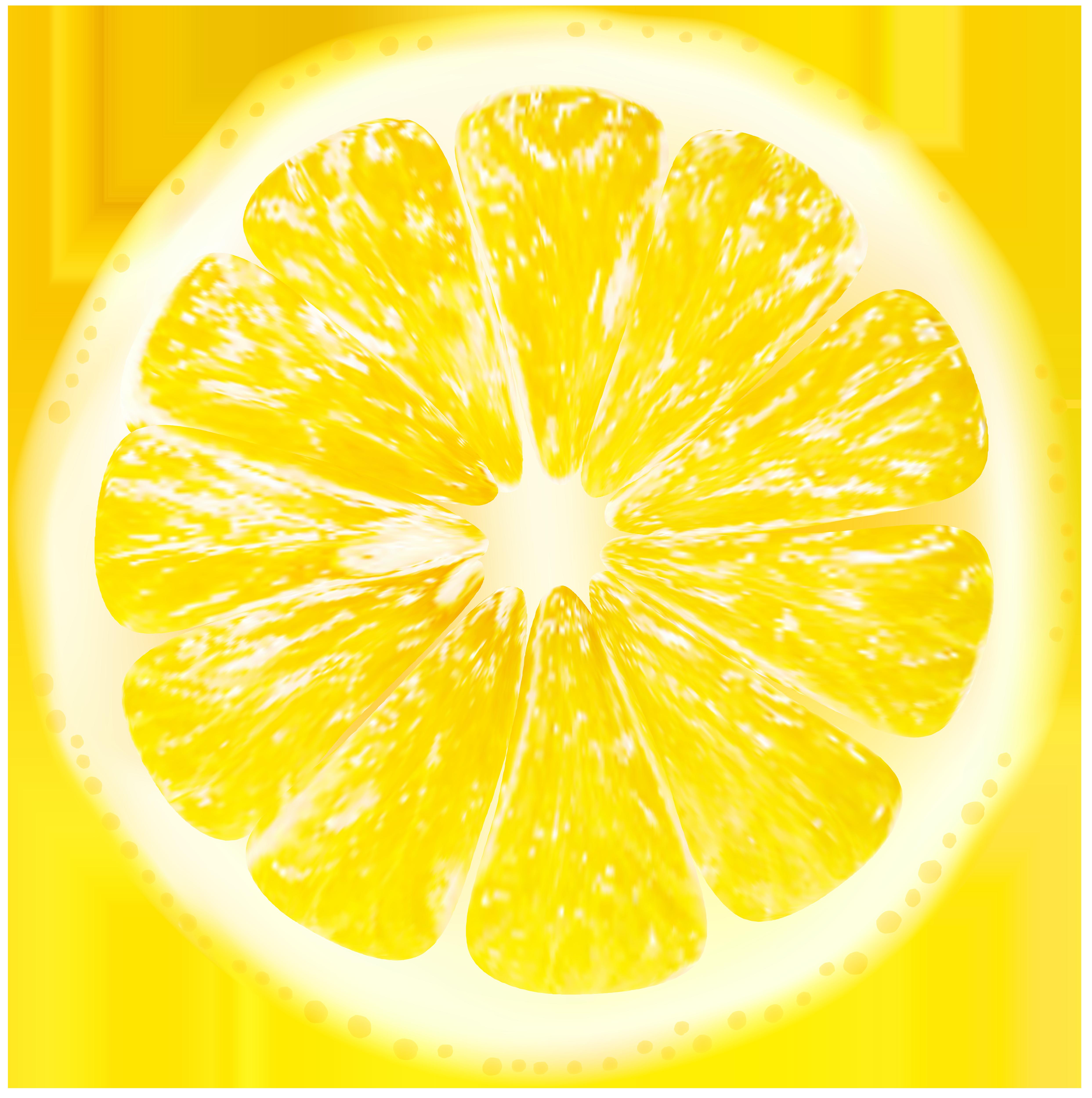 clip transparent stock Slices transparent png clip. Lemon clipart lemon slice.