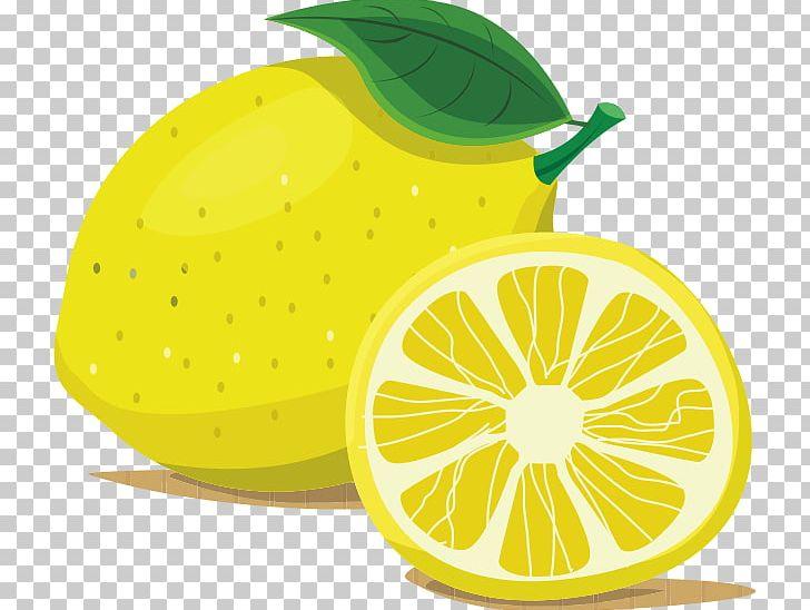 vector black and white Download png images . Transparent lemon cartoon