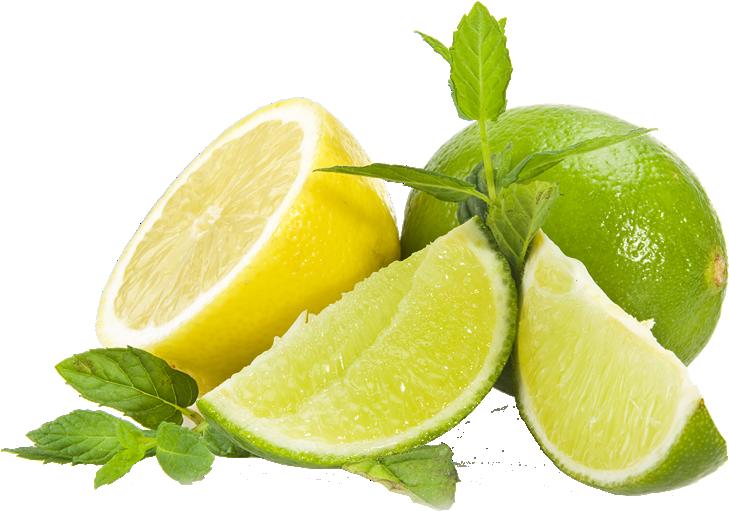 graphic stock lime transparent mint #98984746