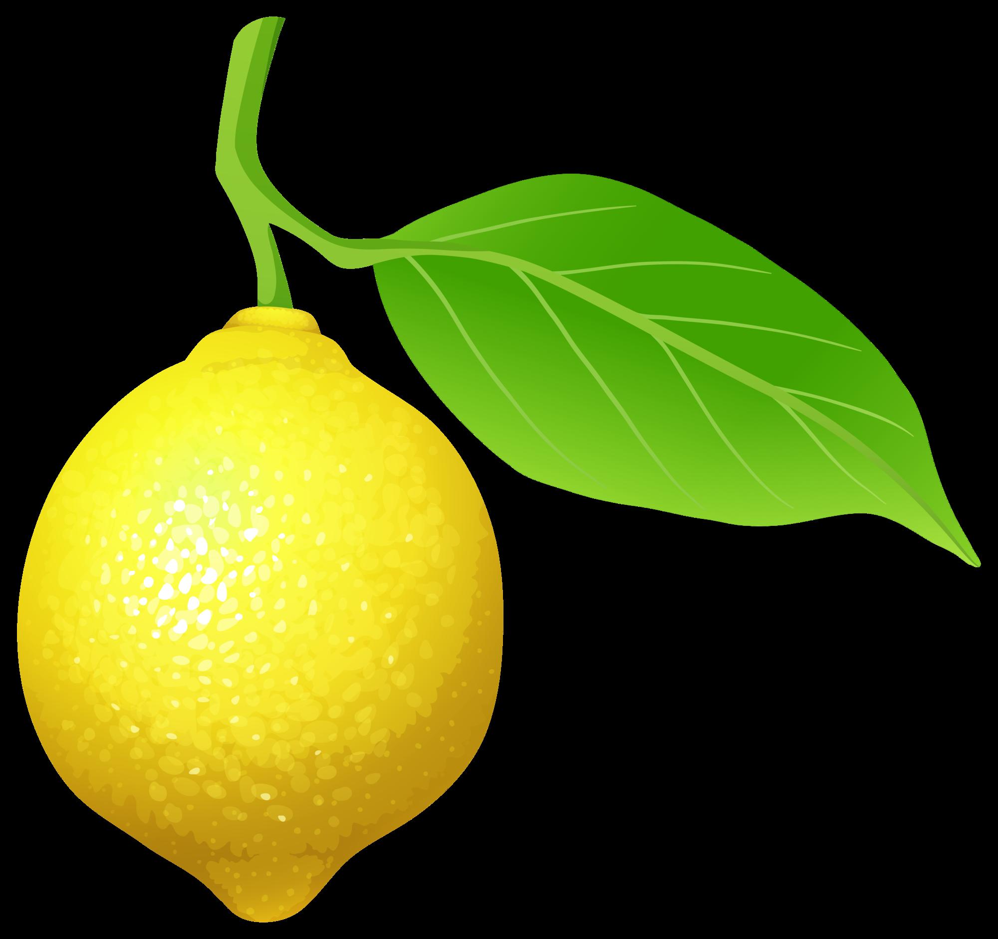 freeuse download Lime green lemon free. Lemons clipart.