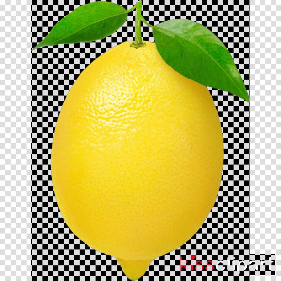 svg library download Citrus lemon fruit yellow. Lemons clipart citron.