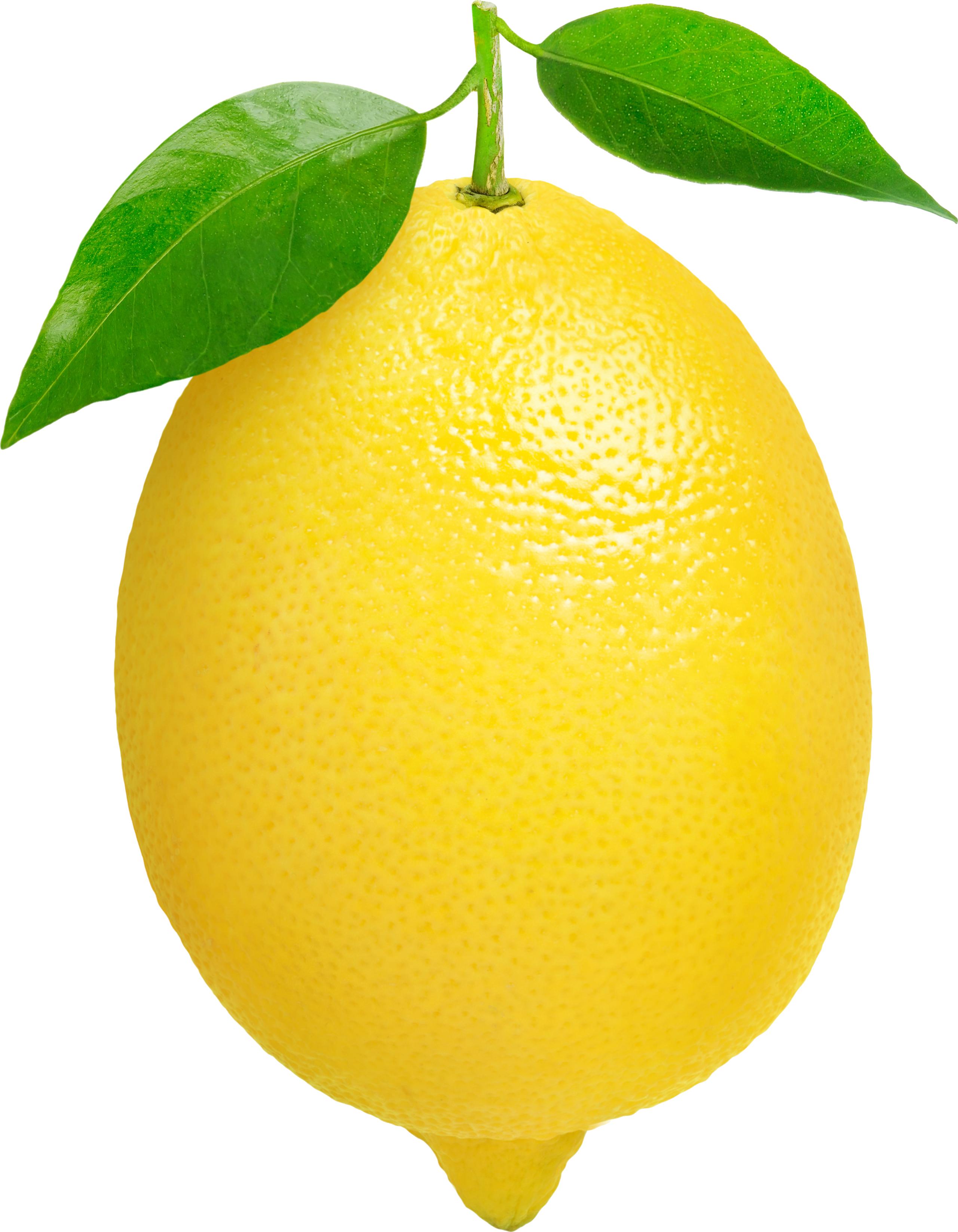 clip black and white download Lemon clip art panda. Lemons clipart citron.