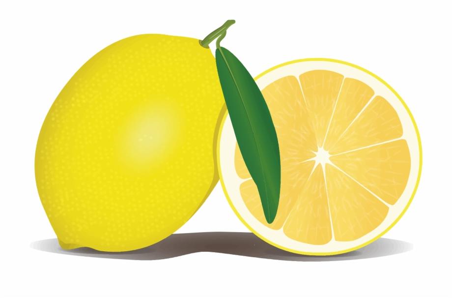 jpg transparent download Lemons clipart file. Lemon png transparent background.