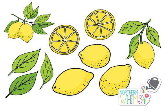 image transparent Pin on products . Lemons clipart lemon fruit.