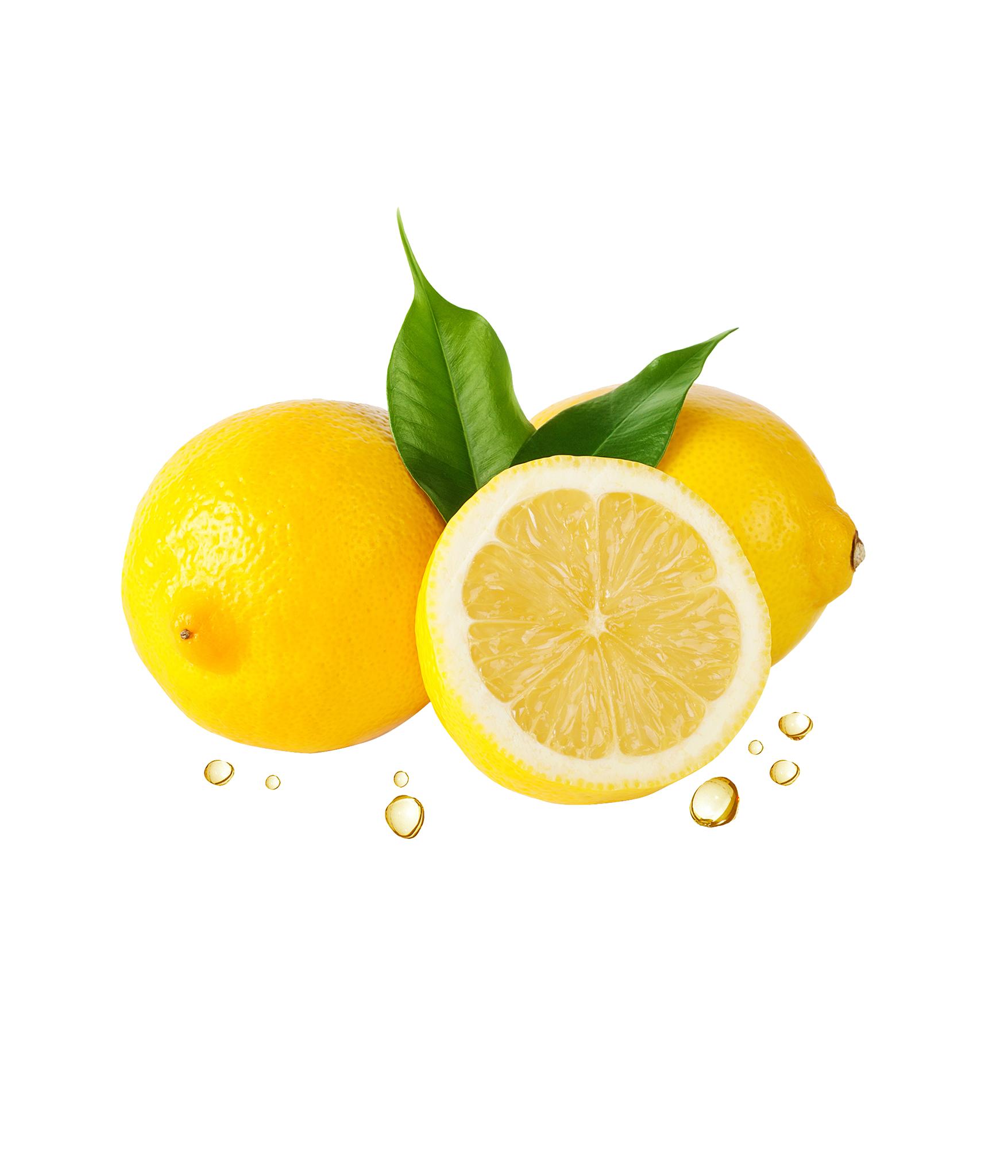 banner freeuse library Lemons clipart lemon fruit. Juice clip art png.