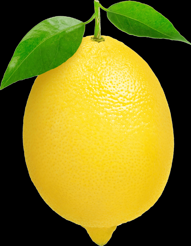 svg royalty free Lemons clipart transparent background. Single lemon png stickpng.