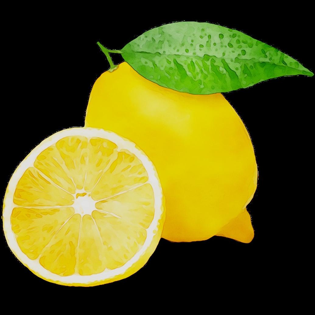 clipart freeuse Lemons clipart veggie. Lemon vitamin c vegetarian.