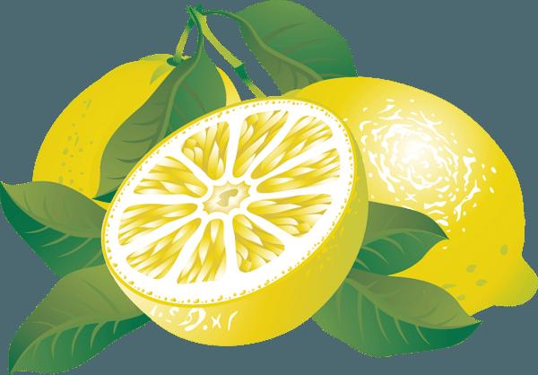 graphic black and white Clip art of citrus. Lemons clipart veggie.