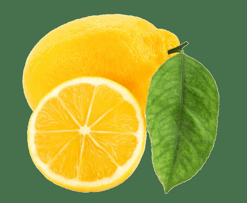 svg freeuse lemon png