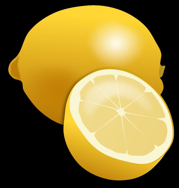 vector free lemons drawing realistic #98891708