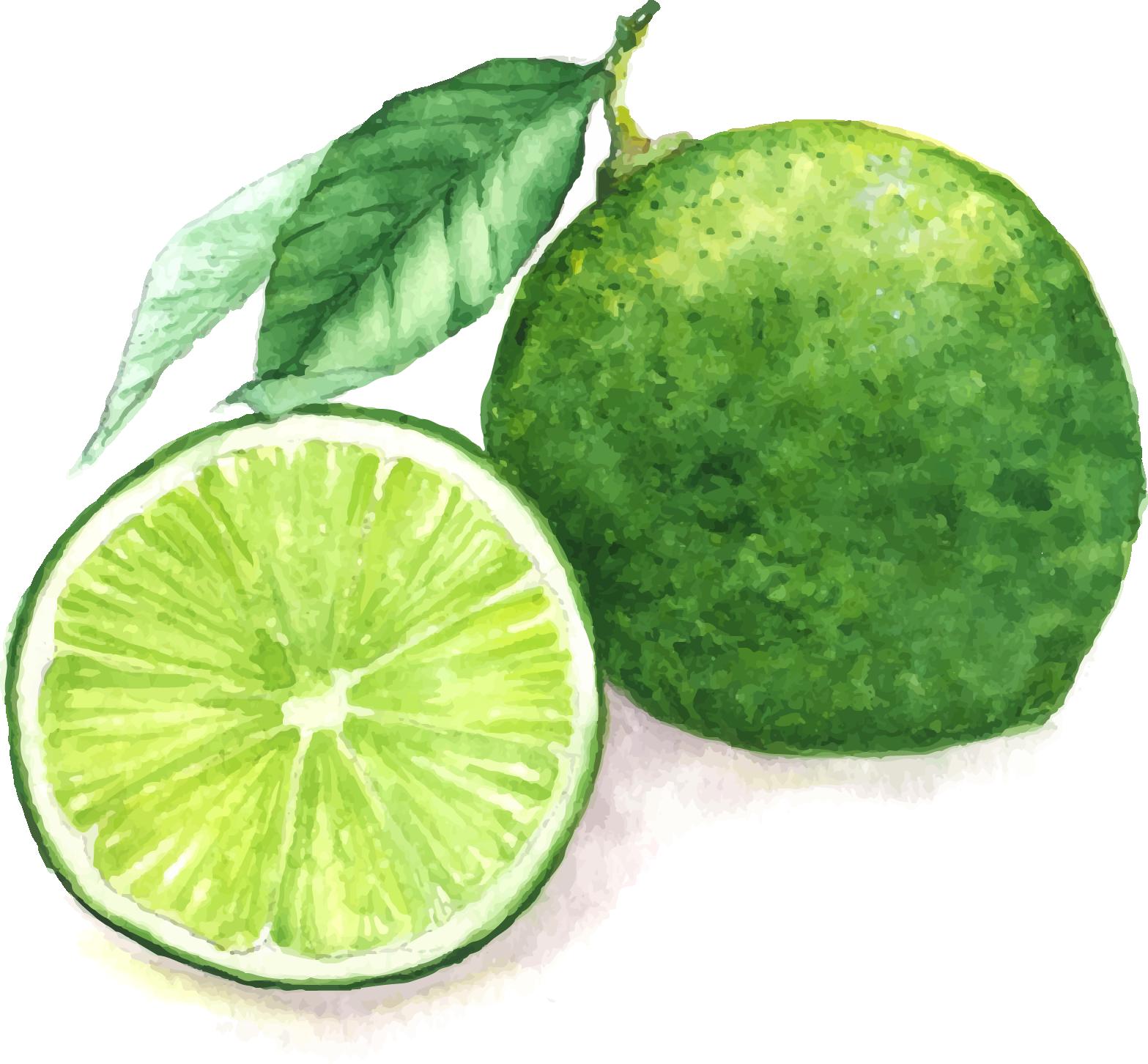 clip freeuse Juice Lemon Watercolor painting Lime