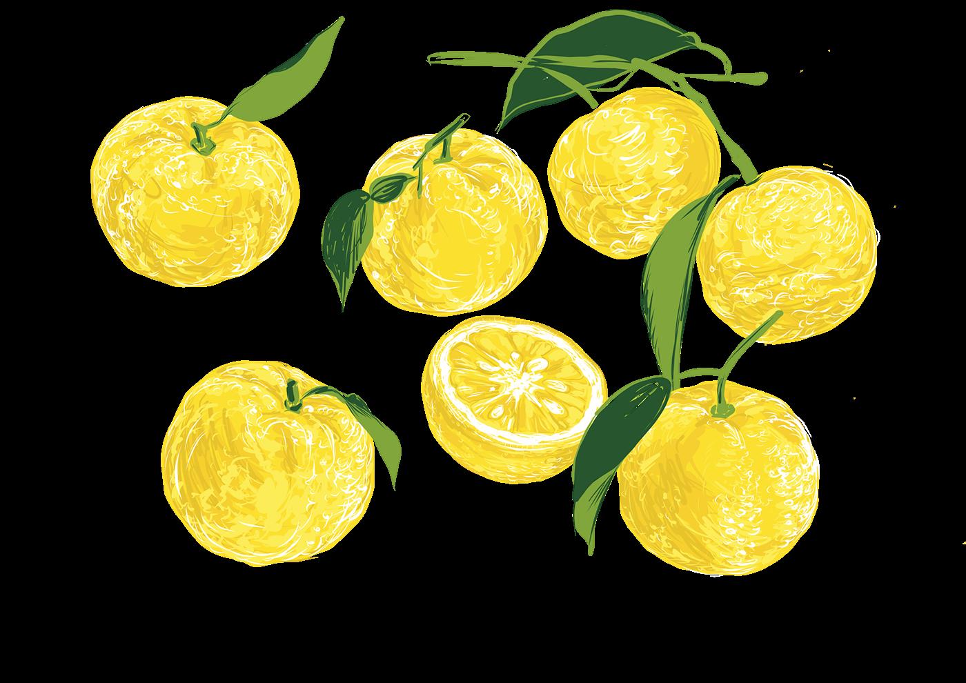 svg black and white download Lemon cake on Behance