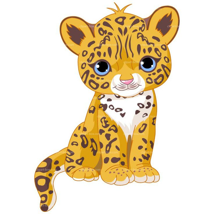 vector transparent library Free cliparts download clip. Leopard clipart.