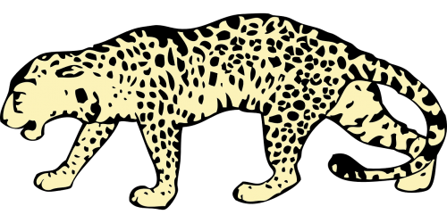 png black and white library Leopard vector eyes. Animal cat wild nature