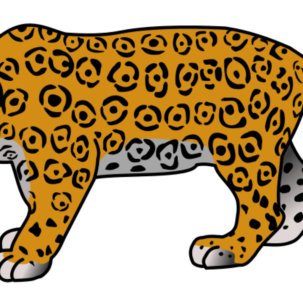 image library library Leopard vector jaguar. Collection of free illustration