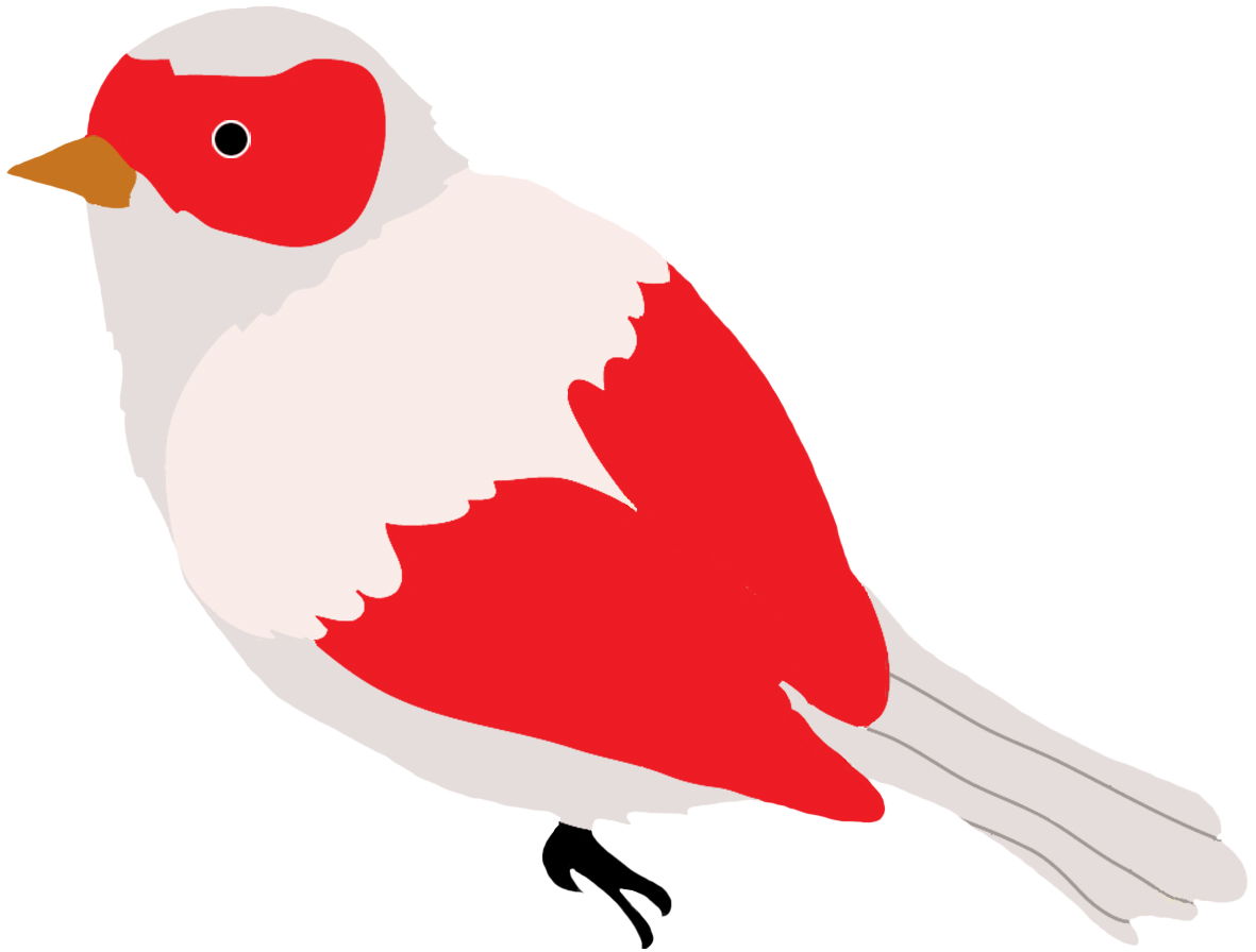 svg transparent library Colorful Drawings of Birds